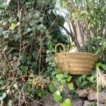 Robust gardening basket