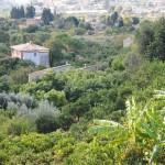 View from Binibassí