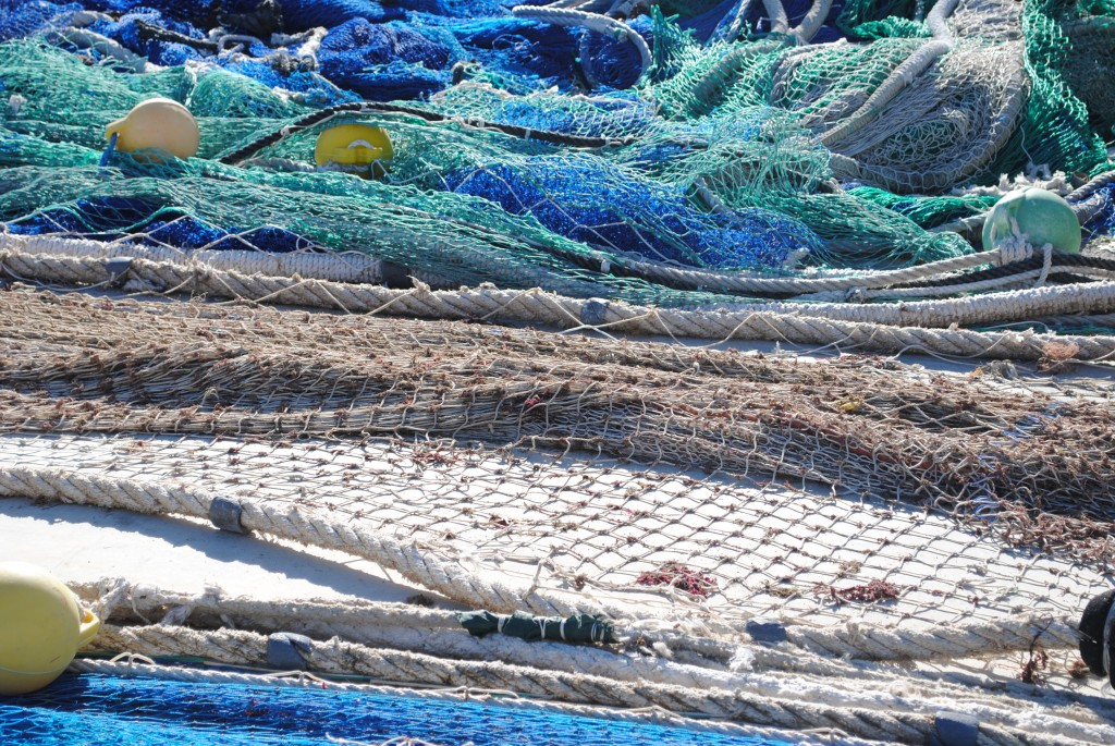 More nets... Amazing colors!
