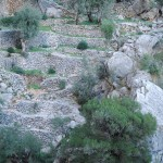 Magical stone walls